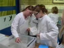 Jonge onderzoekers op obs Middelstein