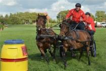 Zevende Harlinger Paardenmarathon