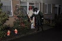 Wie heeft de mooiste kerstboom van 2011?
