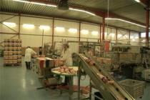 Spekjesfabriek in de startblokken